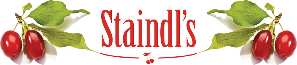 www.staindl.at
